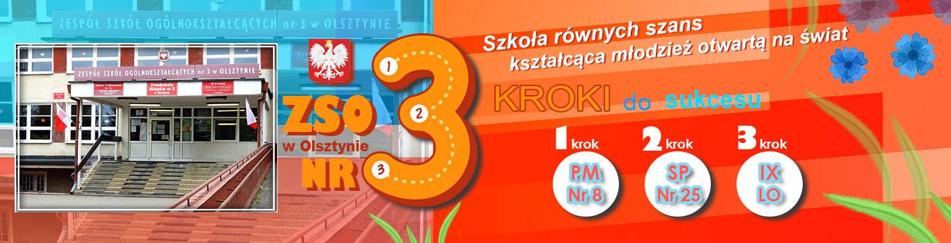 Zespół Szkół Ogólnokształcących Nr 3 w Olsztynie